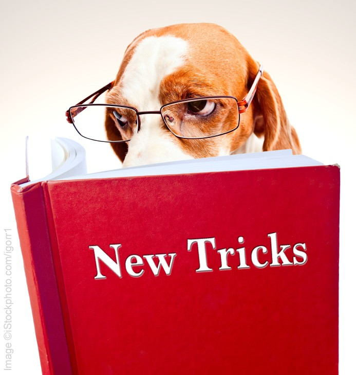 Image result for teaching old dogs new tricks