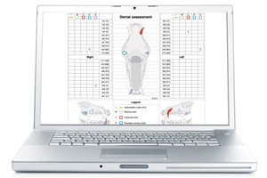 Virbac And The European Veterinary Dental Society Have Developed An Online Charting System Called Electronic Scoring