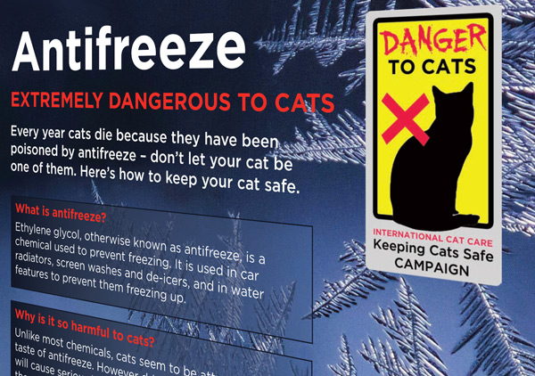 how to detect antifreeze poisoning in humans