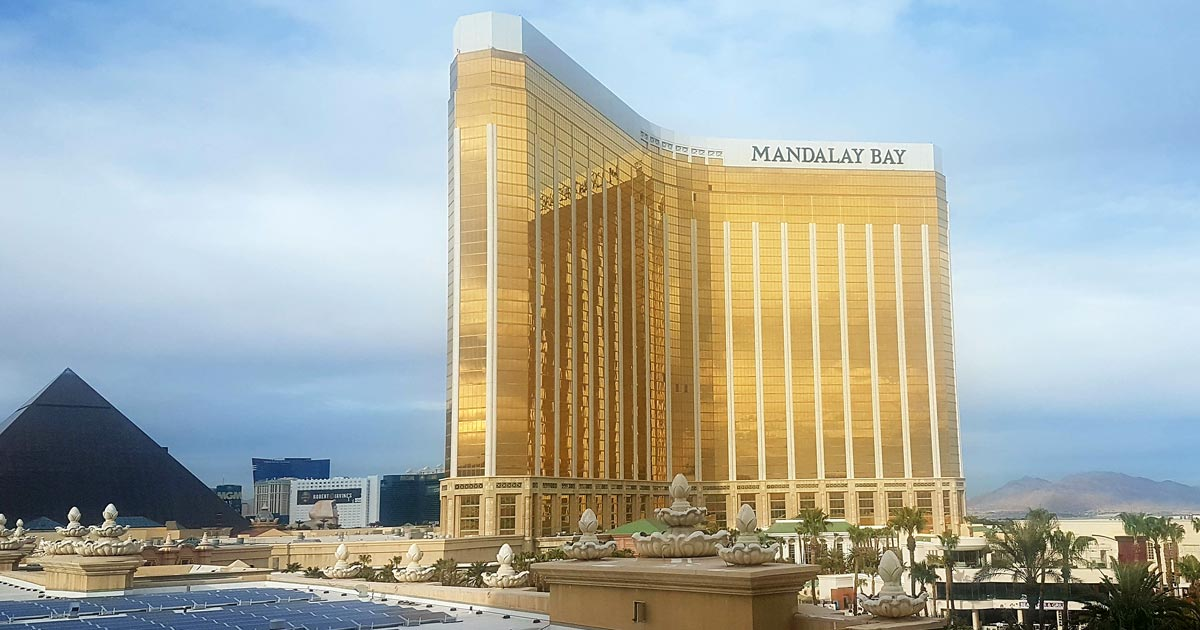 Las Vegas conference experience 'so special' | Vet Times