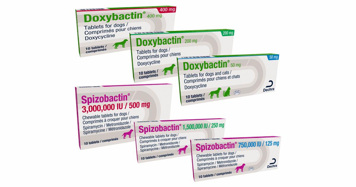 Dechra adds to antibiotic range | Vet Times