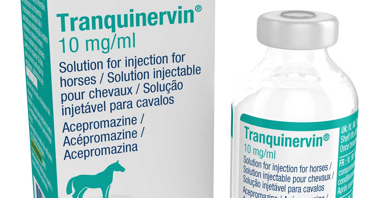New equine sedation and premedication released | Vet Times